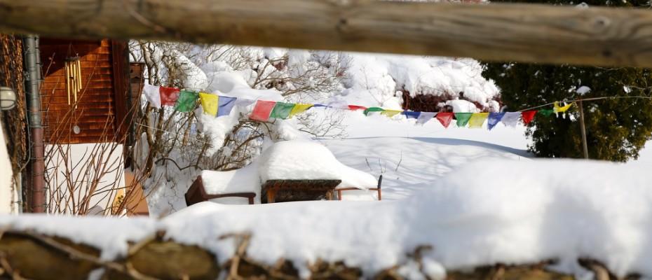 slider marlis winter februar 2015 (10)