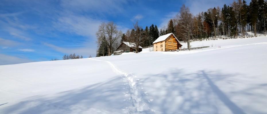 slider marlis winter februar 2015 (14)