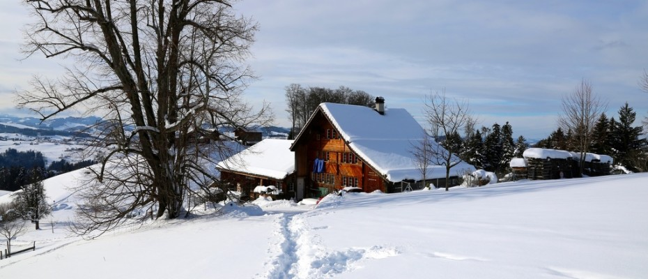 slider marlis winter februar 2015 (20)