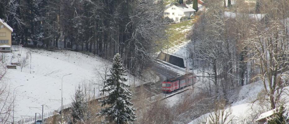Erster Schnee in Teufen (11)