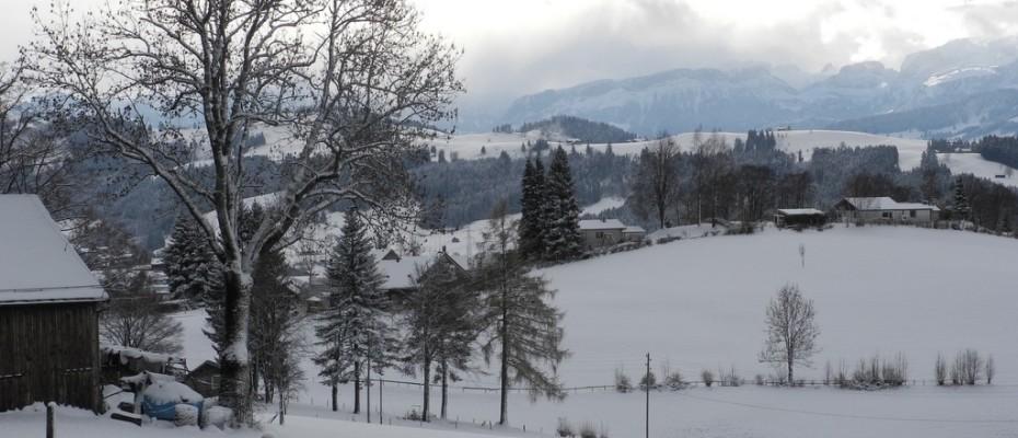 wintereinbruch  impressionen felice (7)