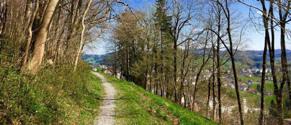 fruehling 2016-3 marlis (7)